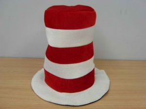 Dr Seuss Cat in the hat Adult Size