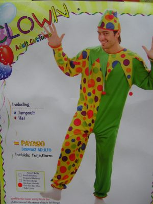 Clown Green Costume