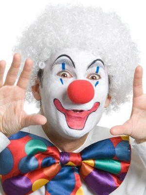 Clown White Wig