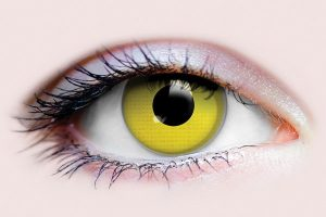 Raven Yellow