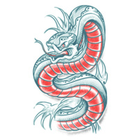 Tattoos - Snake Tattoo