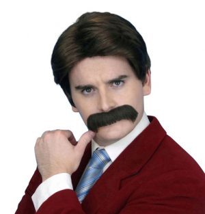 Newsreader 70's Brown Wig and Moustache Ron Burgundy