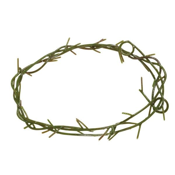 Thorn Crown Jesus